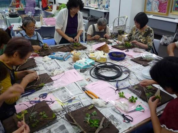 130907園芸福祉教室 (2)